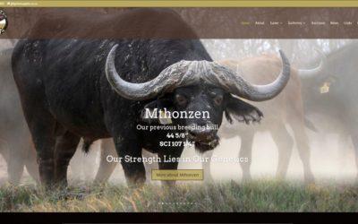Bdumbi Too Ranch – Wildlife Game Breeders in Thabazimbi Limpopo