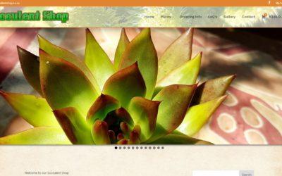 SucculentShop.co.za South African Nursery